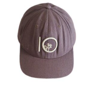 Tentree men's gray  flexfit cap | 10 Tree